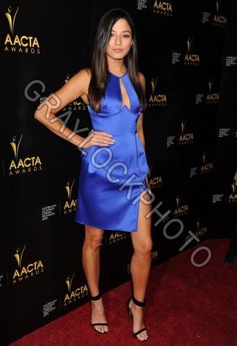 ~Entertainment~20140110~AACTA_Awards~Gomes0269