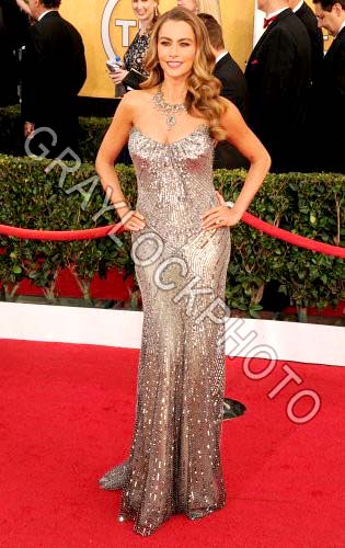 ~Entertainment~20140118~SAG_Awards_Arrivals~DSC_8779