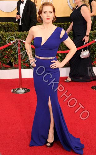 ~Entertainment~20140118~SAG_Awards_Arrivals~DSC_8949