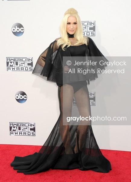 -Entertainment-20151122-American_Music_Awards_Red_Carpet-DSC_50361