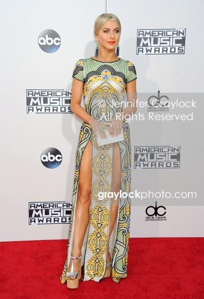 -Entertainment-20151122-American_Music_Awards_Red_Carpet-DSC_5782