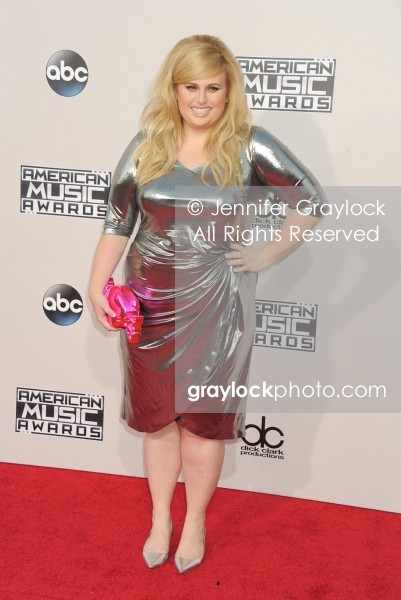 -Entertainment-20151122-American_Music_Awards_Red_Carpet-DSC_5962